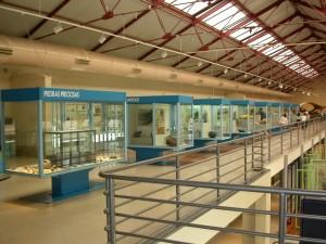 国立自然科学博物館,マドリード