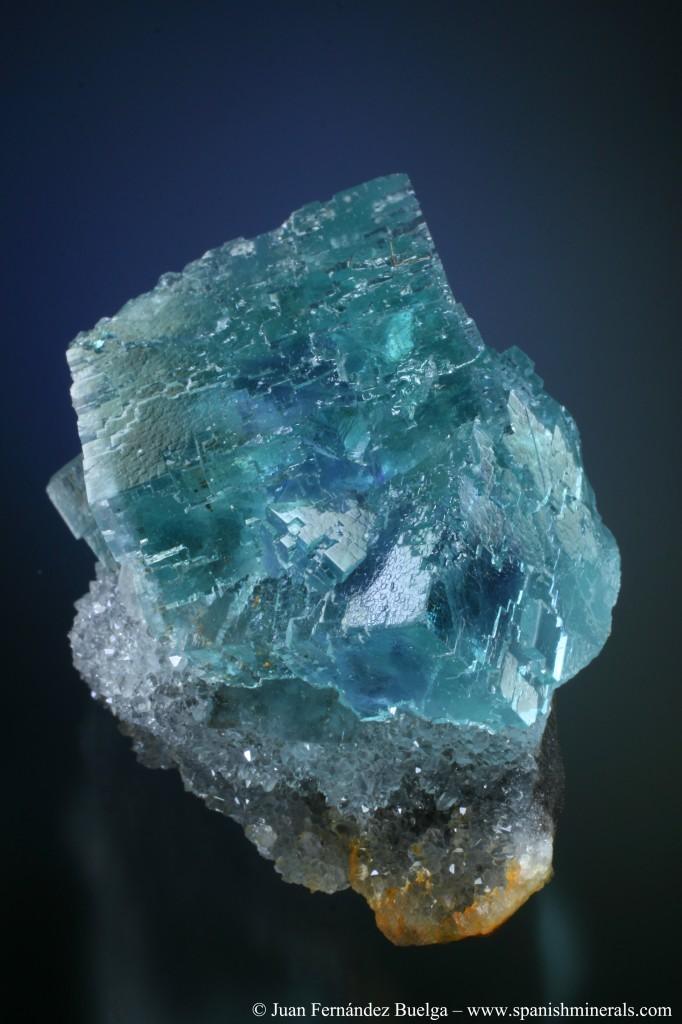 非常に濃い露草色(少しの緑を含む青色)の標本.青色のファントムも見られる